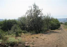 Земельный участок  Алушта  В.Кутузовка